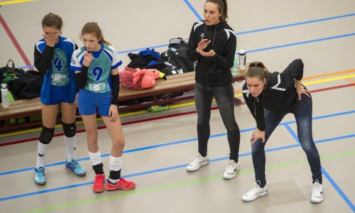 31-03-2019 NED: Final D Volleybaldirect Open, Wognum 16 teams of girls and boys D competed for the Dutch Open Championship / Flamingo's '56vs. Dros-Alterno